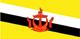 Бруней Flag